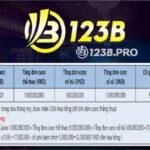 Đại lý 123B là gì?